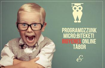Programozzunk micro:biteket! ingyenes online tábor