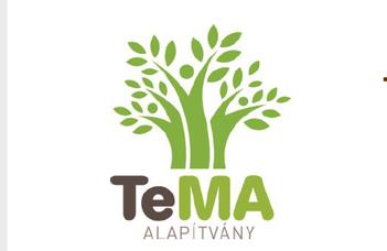 TeMA Tehetség Menedzsment Alapítvány pályázatot hirdet